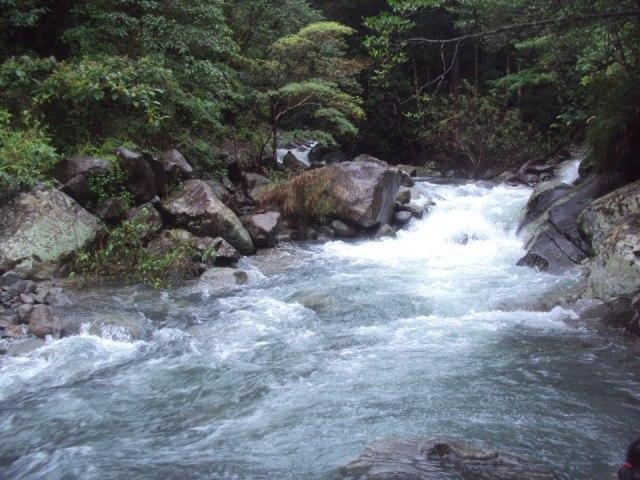 The raging waters going down stream at Paniquian-Tarak Ridge