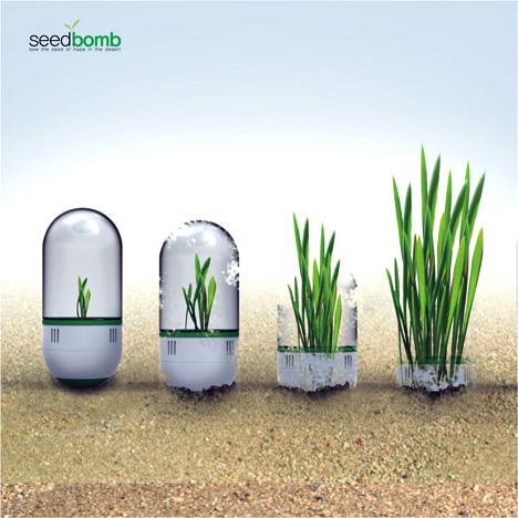 seedbomb1