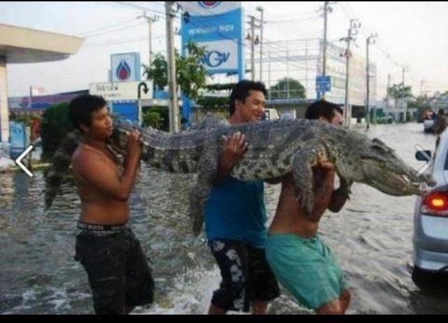 Baha ka lang, Filipino Ako 10